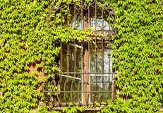 Gitterfenster stockfoto