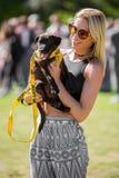 Giudizio dell'esposizione canina con un cucciolo di salvataggio sulla brughiera di Hamstead a Londra fotografia stock
