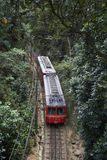 Giungla brasiliana rossa Tijuca Rio Brazil di verde del treno fotografie stock