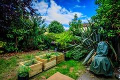 Giungla del giardino Fotografia Stock
