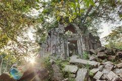 Giungla del tempio di Beng Mealea in Cambogia Fotografia Stock