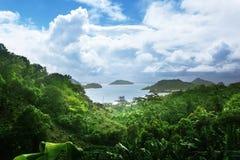 Giungla dell'isola delle Seychelles Fotografia Stock