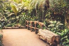 Giungla dello zoo fotografie stock libere da diritti