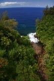 Giungla ed oceano dell'Hawai Fotografia Stock