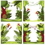 Giungla o piante ed alberi della foresta pluviale con le liane illustrazione vettoriale