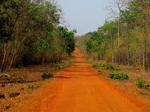 Giungla Safari Road Fotografie Stock Libere da Diritti