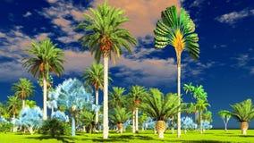 Giungla tropicale durante la rappresentazione di giorno 3d Immagine Stock