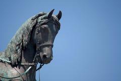 Giuseppe Garibaldi Royalty Free Stock Photo