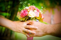 Give flower. On green background Royalty Free Stock Image