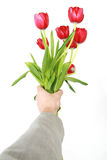 Give flowers. Man give a present to his love Stock Images