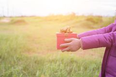 Give the gift on the Day of Love royalty free stock images
