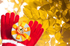 Give a gift. With red gloves on special occasions Royalty Free Stock Photos