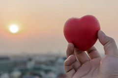 Give the heart of love on hand Royalty Free Stock Images
