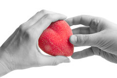 Give a heart Stock Photography
