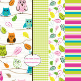 Seamless owl pattern. Colorful seamless patterns including owl, gingham, leaf and stripe prints Stock Images