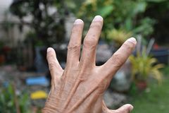 Give me five fingers show your friendship stock image