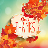 Give thanks, autumn background. Stock Photo
