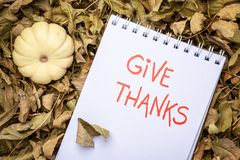 Give thanks handwriting. Give thanks phrase - handwriting in an art sketchbook with a gourds against dry leaveswinter squash and gourds stock images