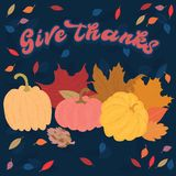 Give Thanks for a happy thanksgiving occasion Vector Illustration