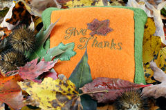 Give Thanks pillow in fall leaves. Felt pillow saying Give Thanks among fall colored leaves royalty free stock images