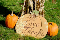 Give Thanks. Pumpkin display by a corn shuck with a wooden pumpkin and two real pumpkins royalty free stock photos
