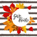 Give thanks sale banner hand drawn lettering with autumn leaves elements royalty free illustration