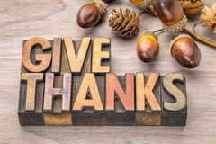 Give thanks - Thanksgiving concept. Text in vintage letterpress wood type printing blocks with cone and acorn decoration stock images