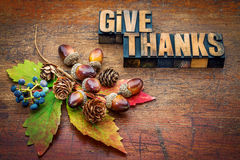 Give thanks - Thanksgiving concept. Text in letterpress wood type printing blocks with cone, acorn, leaf and berries fall decoration stock photo