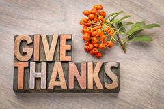 Give thanks - Thanksgiving concept. Word abstract in vintage letterpress wood type printing blocks with firethorn berries royalty free stock photo