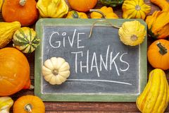 Give thanks phrase on blackboard with squash and gourds. Give thanks - Thanksgiving concept - words in white chalk on a blackboard surrounded by winter squash royalty free stock photo