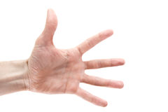 Give it to me!. Give it to me - gesturing hand isolated Royalty Free Stock Image