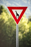 Give a way to giraffe sign, road signs, humor Stock Photos