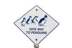Give Way To Penguins Stock Images