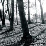 Givendale Yorkshire do leste Inglaterra Foto de Stock