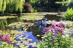 Botanical garden of painter Monet in Giverny, France stock photo