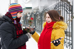 Gives a rose in winter Royalty Free Stock Photo