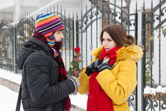 Gives a rose in winter Royalty Free Stock Photos