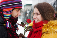 Gives a rose in winter Stock Photo