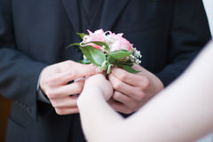 Giving the corsage Stock Image