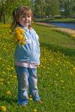 Giving dandelions bouquet Stock Images