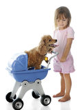 Giving Doggie a Ride Stock Photography