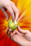 Giving easter golden egg. Male hand giving easter golden egg to woman hand Stock Images