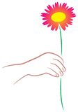 Giving flower. Isolated illustrated image Royalty Free Stock Photography