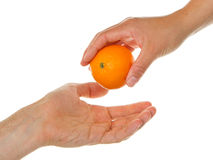 Giving an orange Stock Photography