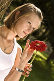Giving a red flower Stock Photos