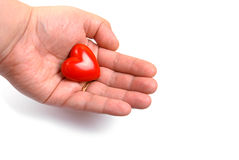 Giving Red Heart. Man Giving Red Heart on white background stock images