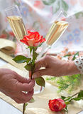 Giving red rose Stock Image