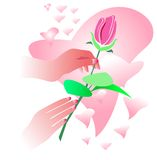 Giving rose. With love isolated illustrated image Stock Photos