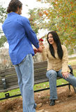 Giving Rose To Girlfriend. Two young people in love. the man give rose to the woman stock image