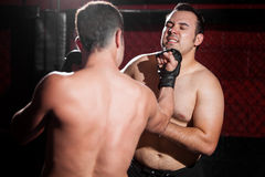 Giving an uppercut on a MMA fight Royalty Free Stock Photos